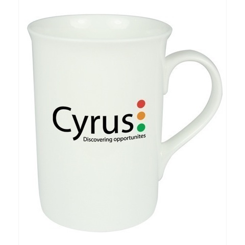 2193 Windsor mug - 350ml